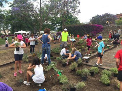 Els escolars han plantat plantes aromàtiques, de bosc, d'hort, etc