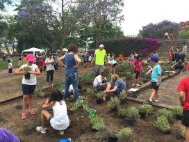 Los escolares plantaron plantas aromáticas, de bosque, de huerto, etc.