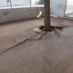 Detall del paviment malmès del passeig