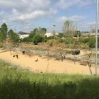 Se ampliarán los espacios de pipican en el parque de la Fontsanta