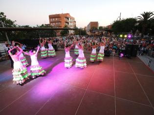 Imatge del festival d'entitats que es va fer l'any passat