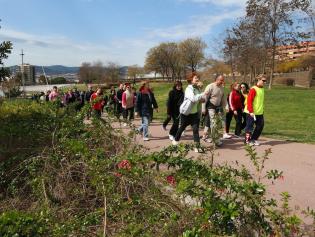 Caminar es una manera muy saludable de cuidar nuestro corazón