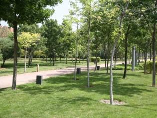 S'abandonarà progressivament l'ús de glifosat en la jardineria municipal