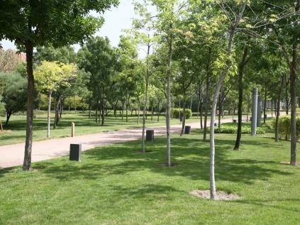 S 39 aprova una moci per una jardineria municipal ecol gica for Jardineria ecologica