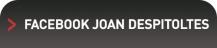JOAN DESPITOLTES